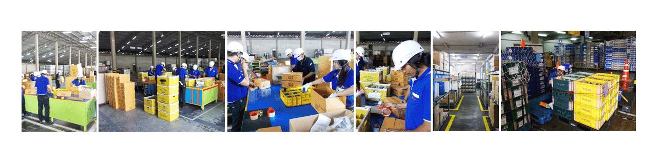 งาน,หางาน,สมัครงาน ไลเน็กซ์ อินเตอร์เนชั่นแนล ประเทศไทย