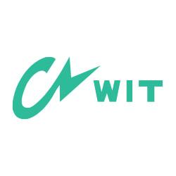 งาน,หางาน,สมัครงาน WIT Thailand
